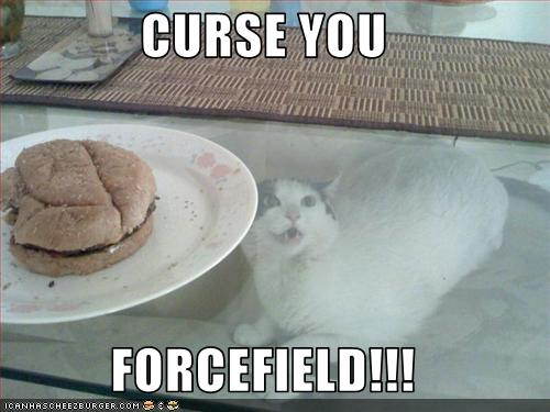 lolcat_forcefield